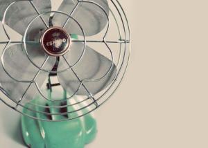 Still Life Fan